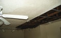 storm damage restoration Tampa